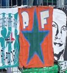 PF (Playboys Fürth)