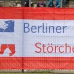 Berliner Störche