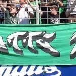Kaputte Moite (grüner Hintergrund)