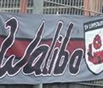 Walibo
