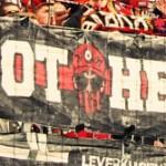 Brothers (Leverkusen)