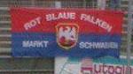 Rot Blaue Falken Markt Schwaben