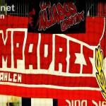 Compadres (klein)