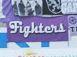 Fighters (Osnabrück)