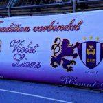 Violet Lions