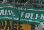 Grüne Freeks