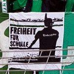 Freiheit für Scholle