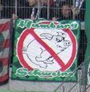 Hamburg Schweine