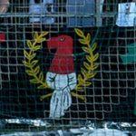 Ultras (Frankfurt, grün-gelb-rot)